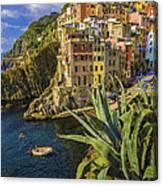 Rio Maggiore Cinque Terre Italy Canvas Print