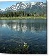 Ripples On Lake Of Mt Tallac Canvas Print