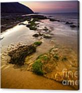 Rising Tides Canvas Print
