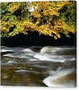 River Camcor Canvas Print