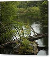 River Crossing Canvas Print