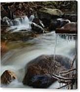 River Detail Canvas Print