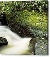 River Flowing Through A Forest, Torc Canvas Print