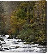 River Lyn In Autumn Canvas Print