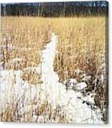 River Of Snow Canvas Print