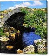 River Owenwee, Poisoned Glen, Co Canvas Print