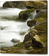 River Rapid 6 Canvas Print