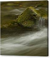 River Rapid 7 Canvas Print