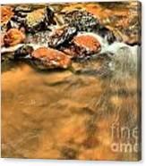 River Rock Swirl Canvas Print