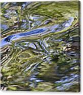 River Swirls - Abstract Canvas Print