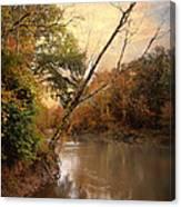 Riverbank 1 Canvas Print