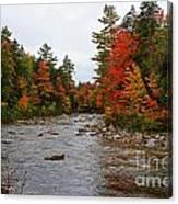 Rivers Run Through It..fall Brilliance Canvas Print
