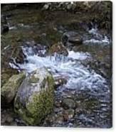 Rivers-streams-creeks - 0038 Canvas Print