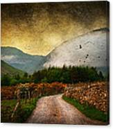 Road By The Lake Canvas Print