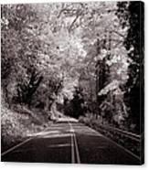 Road Through Autumn - Black And White Canvas Print