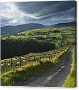 Road Through Glenelly Valley, County Canvas Print