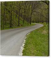 Road Thru Woods Spring 1 Canvas Print