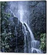 Road To Hana Waterfall Canvas Print