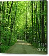Road To Jasper Woods Canvas Print