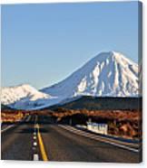 Road To Mt Ngauruhoe Canvas Print