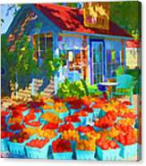 Roadside Market Canvas Print