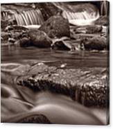 Roaring Fork Great Smokey Mountains Bw Canvas Print