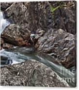 Roaring River Falls Canvas Print
