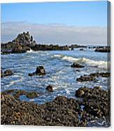Rock Beach Canvas Print