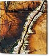 Rock Detail, Killarney Provincial Park Canvas Print