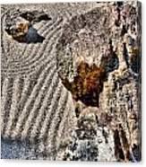 Rock Garden - Hdr Canvas Print