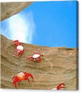 Rock Lobster Canvas Print