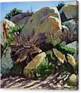 Rocks And Weeds II Canvas Print