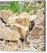 Rocks Bonham State Park Tx Canvas Print