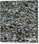 Rocks In Shallow Water Canvas Print