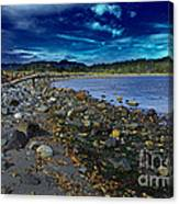 Rocky Beach In Western Canada Canvas Print