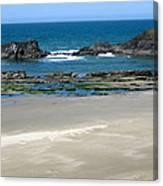 Rocky Coastline Canvas Print