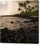 Rocky Coastline, Poipu, Kauai, Hawaii Canvas Print