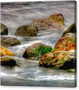 Rocky Front Canvas Print