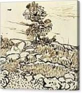 Rocky Ground At Montmajour Canvas Print