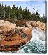 Rocky Maine Coastline. Canvas Print