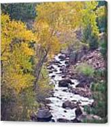 Rocky Mountain Golden Canyon Scenic View Canvas Print