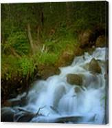 Rocky Mountain Waterfall Canvas Print