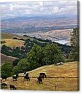Rocky Ridge Canvas Print