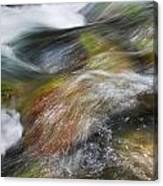 Rocky Riverbed Canvas Print