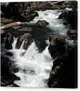 Rogue River Rapids Canvas Print