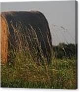 Rolled Bales Of Hay Canvas Print