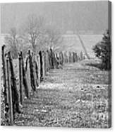 Rolling Fence Canvas Print