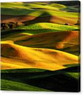 Rolling Hills Of Palouse Canvas Print
