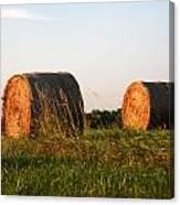Rolls Of Hay Canvas Print