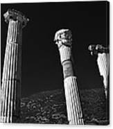 Roman Columns. Canvas Print